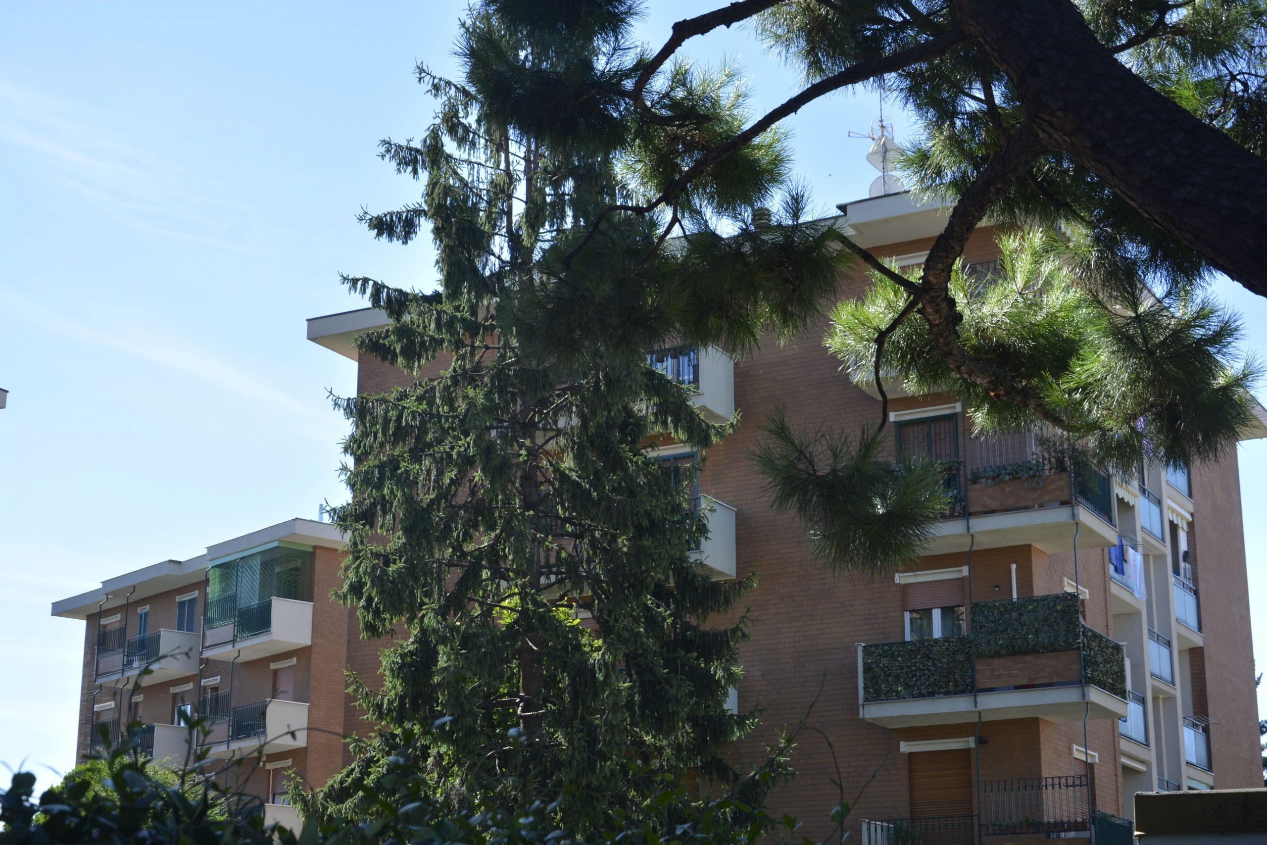 Vendita Quattro locali Brugherio completamente ristrutturato  – Rif. 302